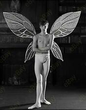Foto 10x12cm Männerballett, Ballett, Junge, Jungs, bulge, Photo, gay interest