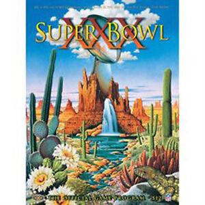 Super Bowl 30 XXX Steelers Cowboys Program 20ct Case