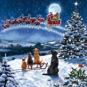 LUXURY CHARITY Christmas Cards   Dog & Cat Festive Santa Snow Scene    Pk 10