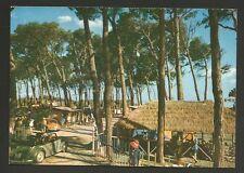 AD6717 Livorno - Provincia - Vada - Camping La Pineta - Animata