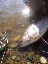 Irideus Redding Rascal Articulated Streamer Steelhead Flies Trout Fly Fishing