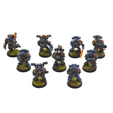 SPACE WOLVES 9 Wolf Guards or grey hunters #5 WELL PAINTED Warhammer 40K guard