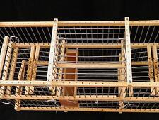 Piège Oiseaux : : Cage à Balance trébuchet Multi-Reprise à deux Blocs trappes