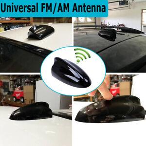 Car Shark Fin Roof Cover Decoration FM/AM Antenna Aerial Radio Signal Universal
