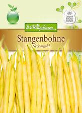 2x Stangenbohne 'Neckargold' - Phaseolus vulgaris, gelb Bohnen Samen MHD 01/2019