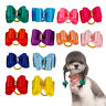 20/100pcs Small Dog Puppy Pet Hair Bows with Rubber Bands Grooming Accessory