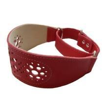 Collar piel perros Galgo rojo regulable motivo punteado S-M cuello 35-45 cm