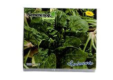 spinacio ibrido n.7 professionale conf. 0,500kg. semi bolloso foglia larga inve