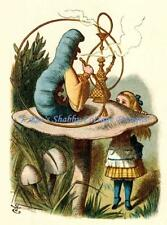 Alice In Wonderland w Caterpillar Fabric Block 5x7