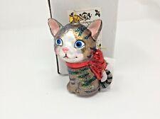 BestPysanky Blown Glass Maine Coon Cat Kitten Christmas Ornament