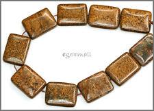 10 Bronzite Flat Rectangle Pendant Beads 15x20mm #85282