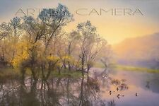 NEW !!  Original Fine Art 8x12 Signed Photo of Misty River & Ducks in Appalachia