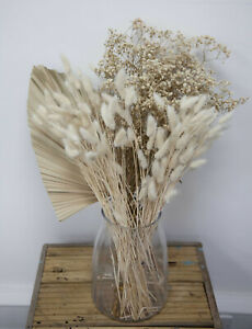 Dried Preserved Baby's Breath Gypsophila Bunch 5 Colours Home Decor Centrepiece