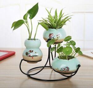 Green Plant Pot Hydroponic Vase Iron Holder Ceramic Home Decoration Ornaments