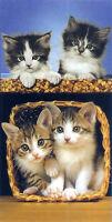 Serviette de plage Drap de bain Chats chatons dans panier beach towel coton