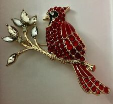 enamel red cardinal pin Nwot-Anne Klein Pave & colored