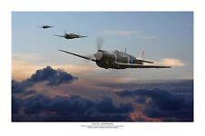 """WWII WW2 RNZAF Curtiss P-40 Warhawk Kittyhawk Aviation Art Photo Print - 8""""X12"""""""