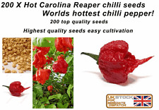 200 X WORLDS HOTTEST CAROLINA REAPER CHILLI PEPPER SEEDS 100% GENUINE, UK SELLER