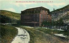 """PINE HILL NY """"NEW"""" MOUNTAIN INN CATSKILL MOUNTAINS P/C"""