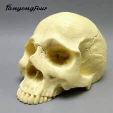 Skull Silicone Mould Fondant Cake Mould Resin Gypsum Chocolate Candle Candy