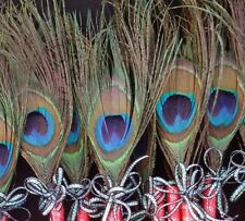 12 Peacock Feather Pen Party,forParty,Sweet16,Bridal S,Mom GIft,Weddin,Graduatio