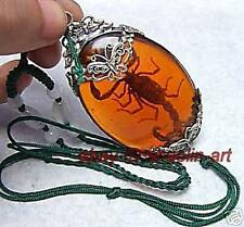 amulette, pendentif en ambre Scorpion Tibet + chaîne
