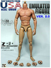 1/6 Scale Muscular Nude Figure Body Ver 2.0 TTM19 For Wolverine Head U.S.A.