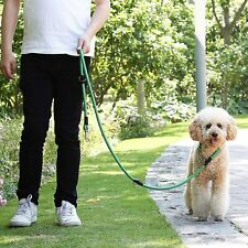 New listing Hands Free Dog Leash for Running, Hiking or Walking Nylon Dual Leash