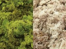 Reindeer Moss Natural And Green 500g Bag Christmas Decorations Floral Gifts