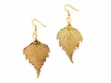 Plated Earrings French Wire Dangle, Hook Usa Birch Real Leaf 24k Gold Dipped /