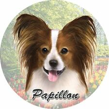 E&S Pets Absorbent Car Coaster Dog Breed Stoneware Papillon Puppy Pup