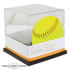 Collectible Softball Display Case w/Black Base by Studio Decor