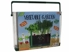 Grow Your Own Vegetable Garden Look & See Childrens Kids Educational Craft Kit