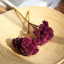 Artificial Silk Hydrangea Fake Flowers Outdoor  Succulent Plants Wedding Party