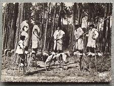 BERGERS LANDAIS ECHASSES LOUS CIGALOUS DE MORCEUNS     postcard
