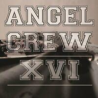 Angel Crew - XVI [VINYL]