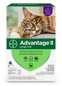Bayer Advantage II Topical Flea Treatment Large Cats (Over 9 lbs) - 6 Tube Doses