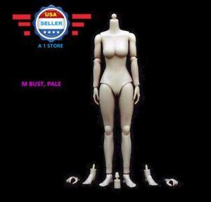 1/6 Scale Female Nude Figure Body Doll Medium Bust Pale Skin Tone