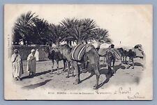 Algeria Biskara Camel Parking lot postcard used to Paris