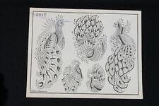 Vintage Spaulding & Rogers Tattoo Flash Sheet Peacock Design #394T