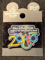 Walt Disney World Year 2000 Pin Celebrate The Future Hand In Hand Vintage