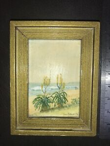 Signed By Unknown South African Artist. Oil Painting.  Beautiful Detail Tabletop