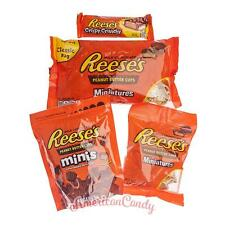 Toller HERSHEY REESES-MIX:  8 seltene REESE'S Produkte (29,88€/kg)