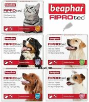 Beaphar Fiprotec Spot On Flea / Tick Treatment For Cats and Dogs, 4/6 Pipettes