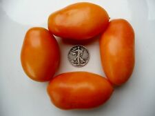 Orange Banana - Organic Heirloom Tomato Seeds - Great Paste - 40 Seeds