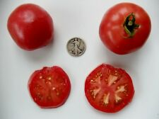 Rose De Berne - Organic Heirloom Tomato Seeds - Premier Slicer - 40 Seeds