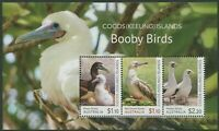 COCOS (KEELING) ISLANDS: BOOBY BIRDS 2020 - MNH MINIATURE SHEET (B274)