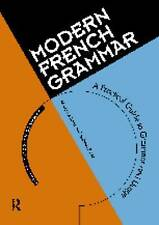 Modern French Grammar: A Practical Guide to Grammar and Usage (Routledge Modern
