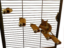 Degu Steps - Degus, rats, mice, gerbils, hamsters, cage accessory