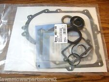 Engine Gasket Set, Oil Seals for Briggs & Stratton 10hp to 13 hp, 494241, 490525